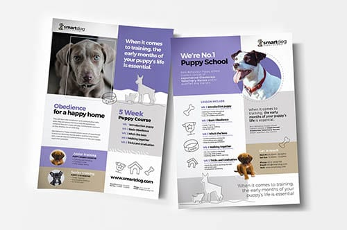 Animal & Pet Care Templates in PSD & Vector