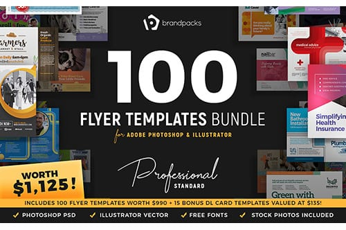 100+ Flyer Templates Bundle