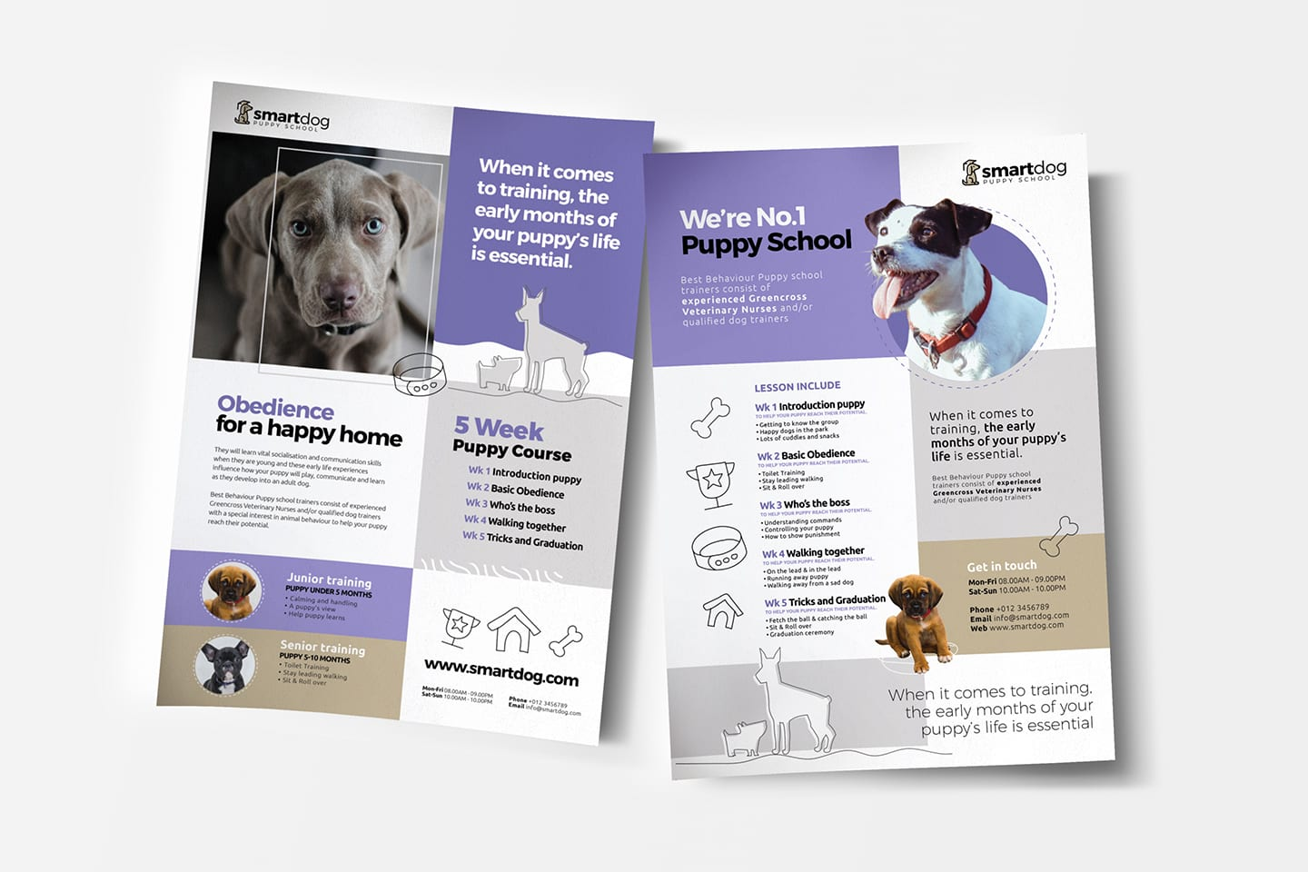 A4 Puppy School Poster / Advertisement Template