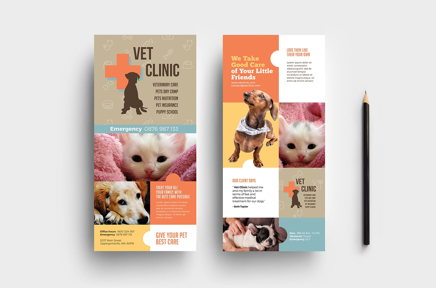 Vet Clinic DL Rack Card Template