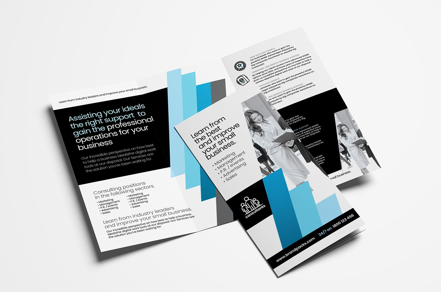 Sales Brochure Template from brandpacks.com